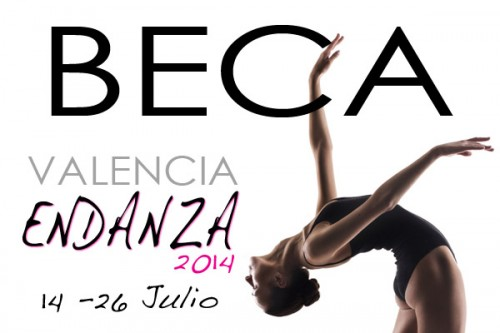 BECA ENDANZA2014